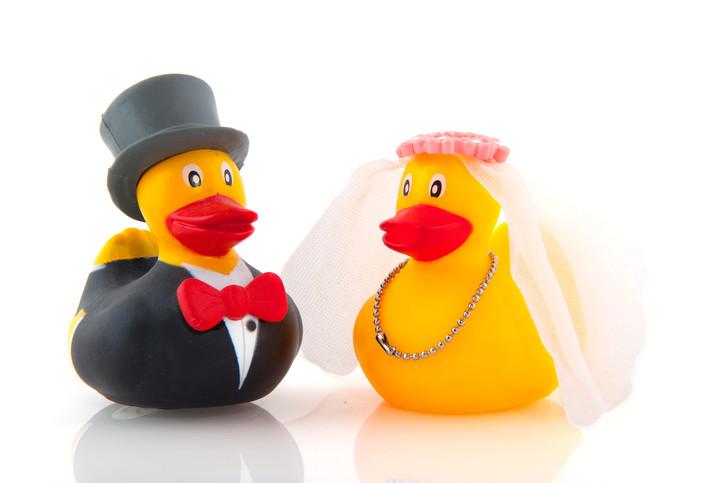 A confusão do casamento