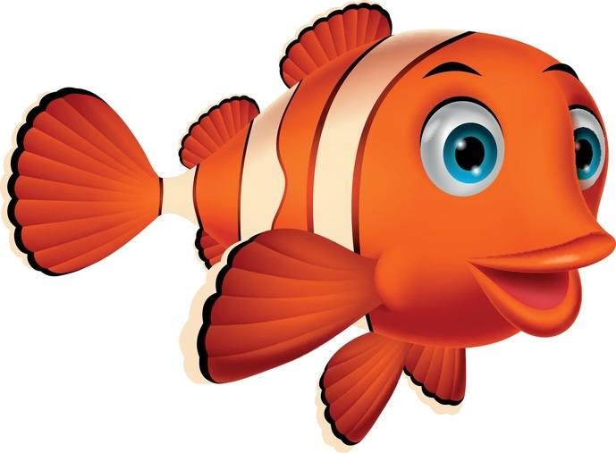 O peixe-palhaço